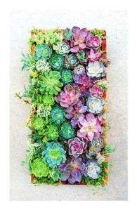 Succulent Gradient