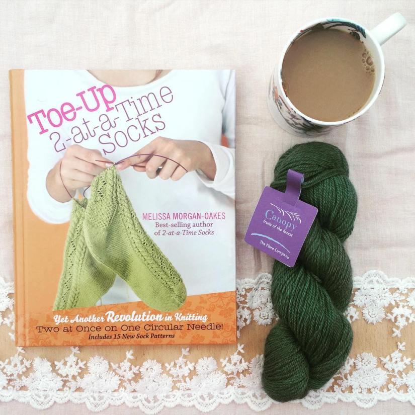 Toe up sock knitting book