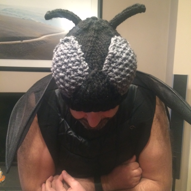 Fly costume