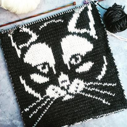 Kitty Cushion